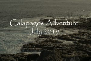 Galapagos Adventure July 2019